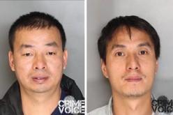 19 Arrested During Pot Operation Sting
