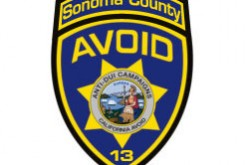 Sting Catches Drivers With Suspended Licenses Driving Away From Sonoma County Court