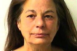 California – Florida connection leads to marijuana arrests