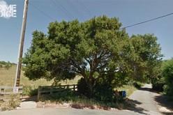 Santa Cruz Police Identify Murder Victim