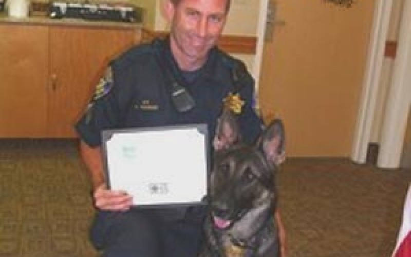 K-9 Officer Captures Robbery Suspect