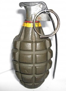 """A """"pineapple"""" style grenade was found in the house."""