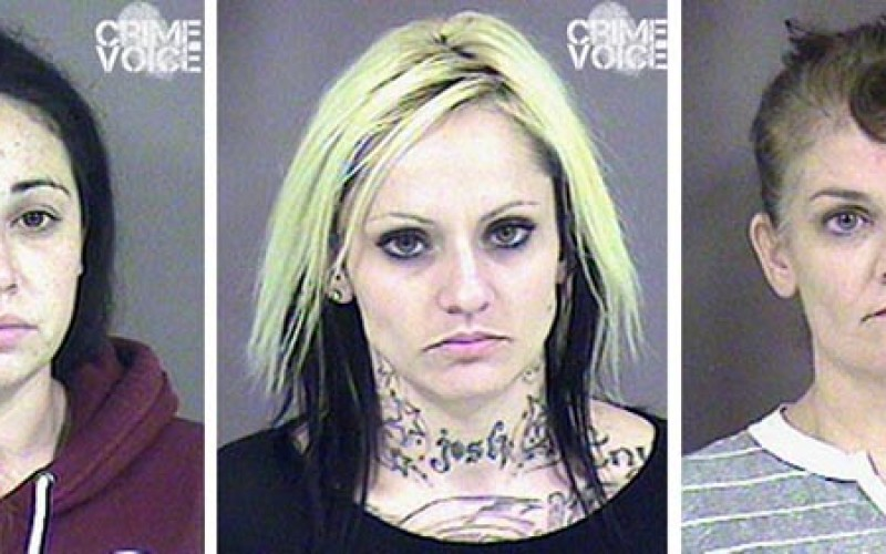 Probation Check nets Six for Fraudulent Checks