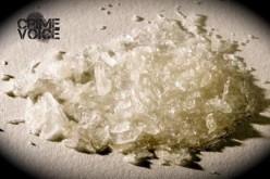 Drug bust yields gun, meth, cash