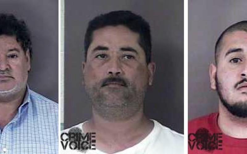 Search Warrants Net Nine Guns in Area Homes