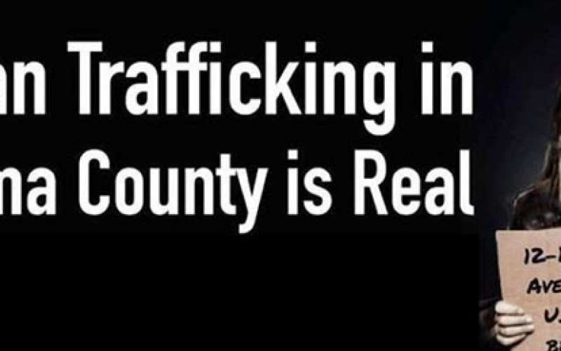 10 men nabbed in trafficking task force operation