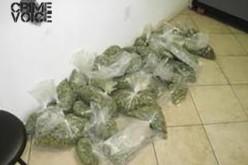 LB Police Make Arrest in Pot Dispensary Case