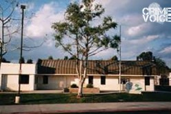 School Lockdown as Brandishing Suspect Apprehended