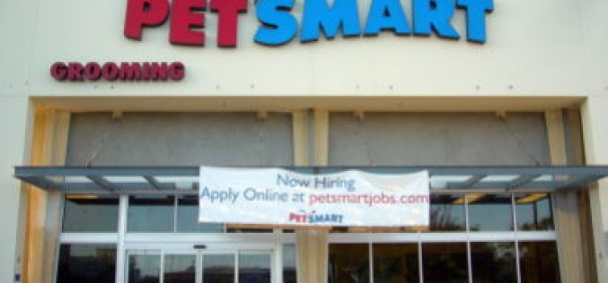 Armed Robber Holds up Petsmart in Seal Beach