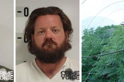 Sophisticated pot growers caught by detectives