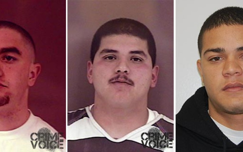 Hollister Police Arrest Two In Connection To Shooting