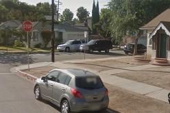Gardener Gets Crop of Vehicle Charges