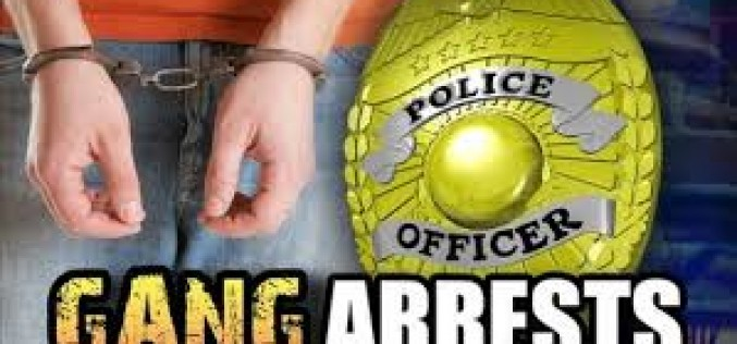 Gang Task Force Sweep Leads to the Arrest of Twelve