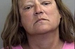 Woman arrested in second domestic violence this year