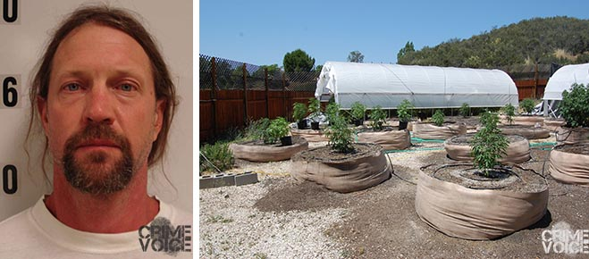 Wade Knowles booking photo, and an example of the nursery-like marijuana grow on his property.