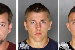 Roseville PD Makes Arrests in Recent Theft Cases