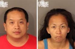 Roseville PD Makes Recent Theft Arrests