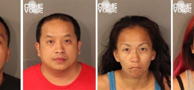 Roseville PD Makes Recent Theft Arrests