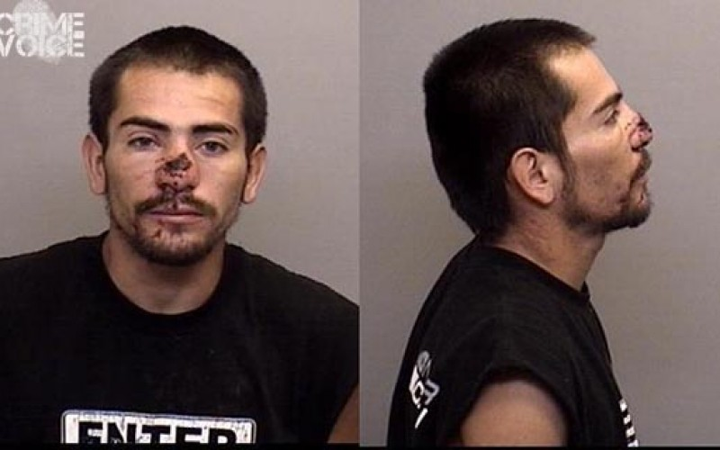 Busy car thief arrested once again