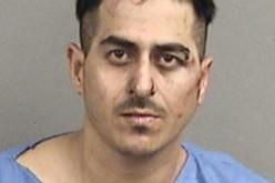 K-9 Unit Makes Dogged Effort to Find, Apprehend Car Thief