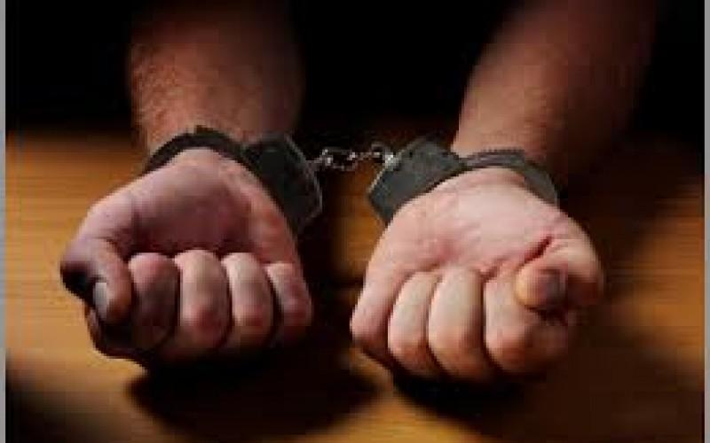 Parole & Probation Net Nabs 22