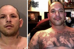 Wanted man captured with K9 help