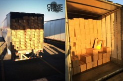10,000 Pounds of Marijuana Seized