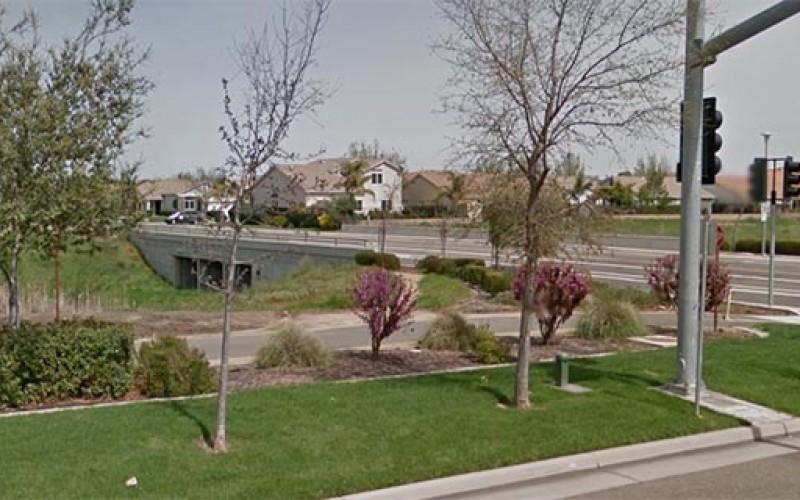 Parolee Arrested for Elk Grove Homicide