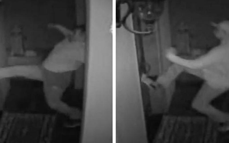 Sac Sheriff Needs Help Identifying Burglary Suspects