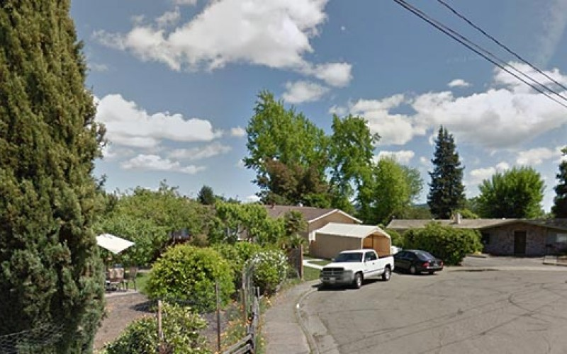 Man chasing marijuana burglars gets shot, police arrest one