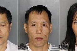 11 Arrested in Marijuana Operation Across Sacramento Region
