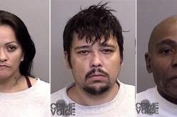 Mendocino County drug arrests