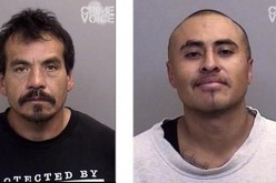 Mendocino men busted on weapons charges