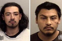 Two arrested in birthday party fight