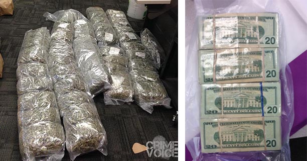 Detectives found plenty of processed marijuana and a lot of cash, along with other evidence.