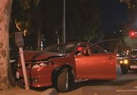 Wade's car crashed into a tree and parking meter.