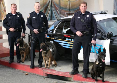 3 officers and dogs from the Santa Rosa Police K9 team.