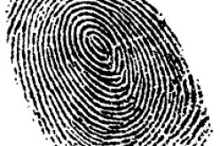 Fingerprints Point Police in Suspects' Direction