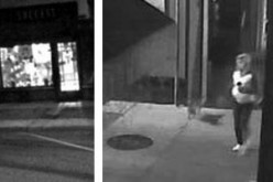 Police Need Help in Finding A Stone Stealer
