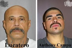 Investigation Sends Two to Jail for Guns, Drugs, Stolen Property