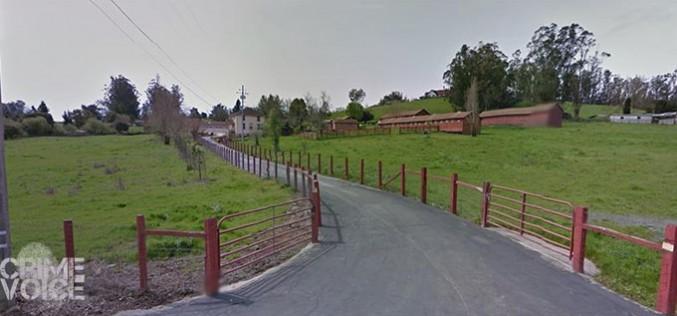 Penngrove murder under investigation – Suspects arrested