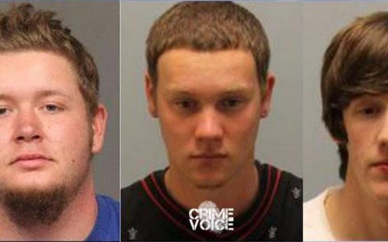 Burglary Boys Busted