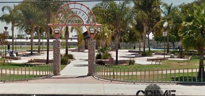 Two Men Arrested at Eucalyptus Park for Multiple Warrants