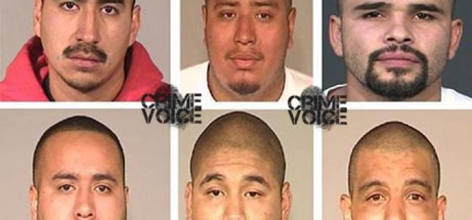 Gang Members Arrested in Murder Case During Sweep