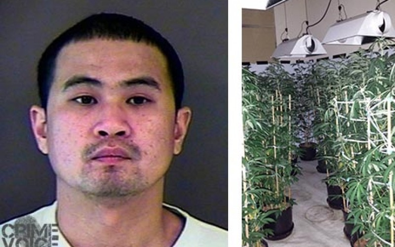 Forced Entry Nets Illegal Grow Operation