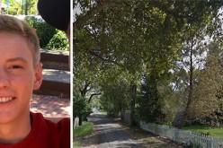 Sonoma Sheriff's Reunite Burglar With Singing Cell Phone