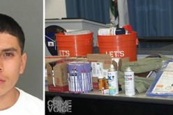 Santa Cruz Area Serial Tagger Arrested