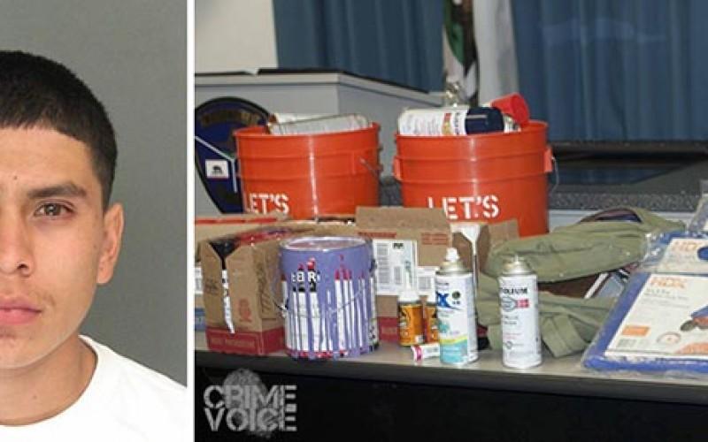 Santa Cruz Area Serial Tagger Arrested