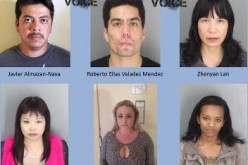 17 Arrested in Human Trafficking Crackdown