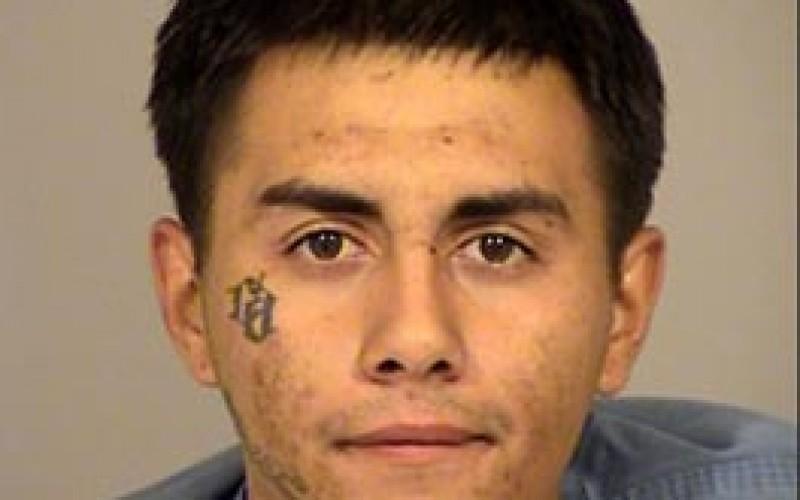 Serial Burglar Busted
